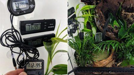 Thermometer / Hygrometer Comparison